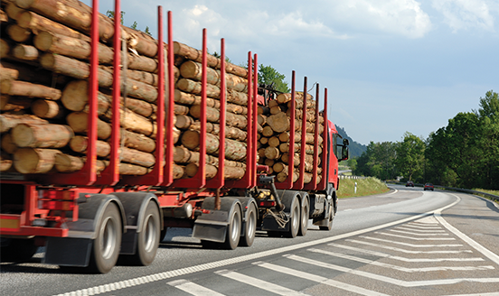Logging truck transporting tree logs